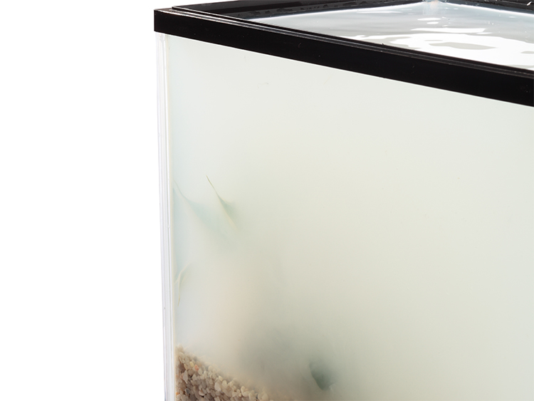 Corner of an aquarium filled with milky, cloudy white water obscuring its contents.