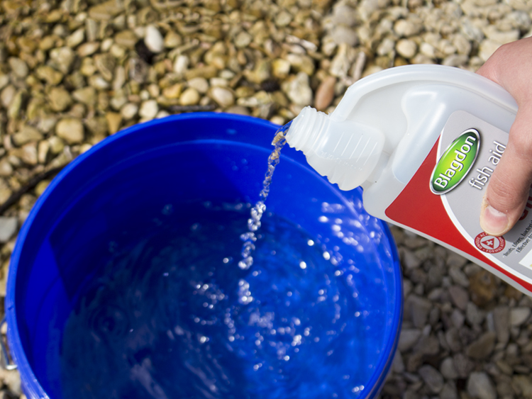 A hnad pouring a clear liquid Blagdon Treatment into a bucket of pond water