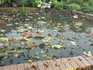 Leafy Pond Cover Net